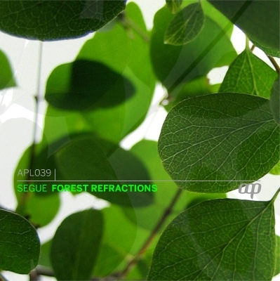 Cover of Forest Refractions
