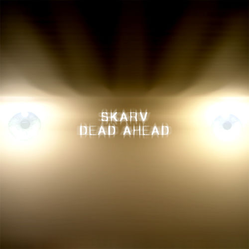 Cover of Dead Ahead