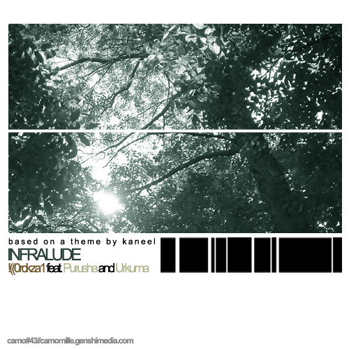 Cover of Infralude