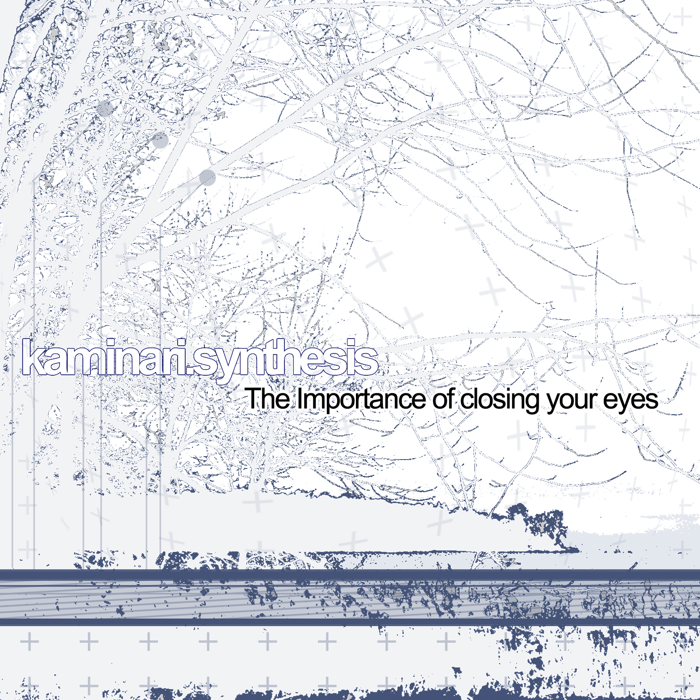 Cover of The importance of closing your eyes