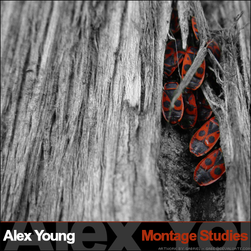Cover of Montage Studies