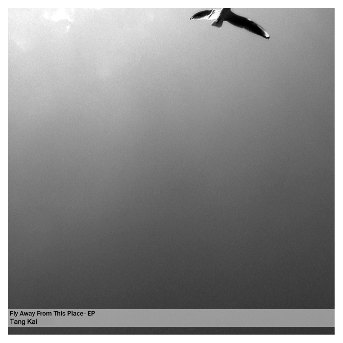 Cover of Fly away from this place ep
