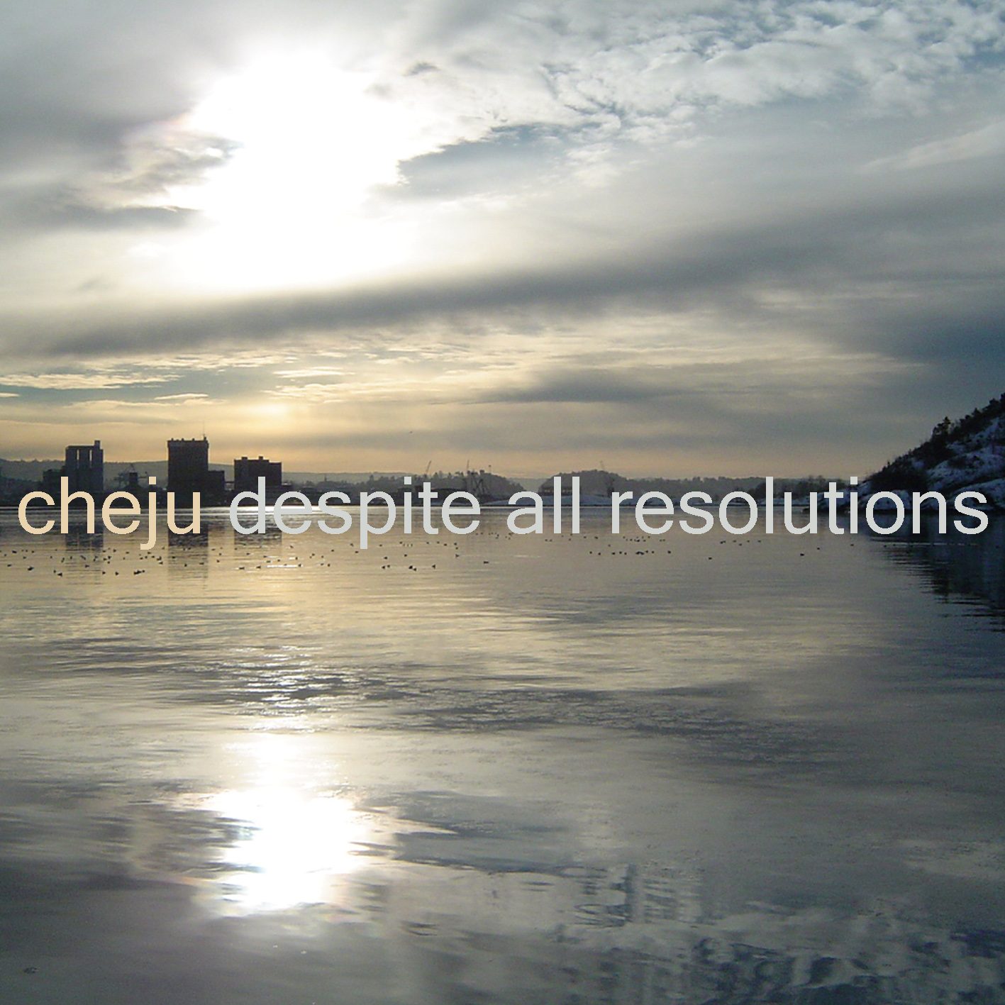 Cover of Despite all resolutions