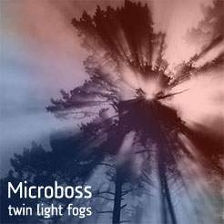 Cover of Twin Light Fogs