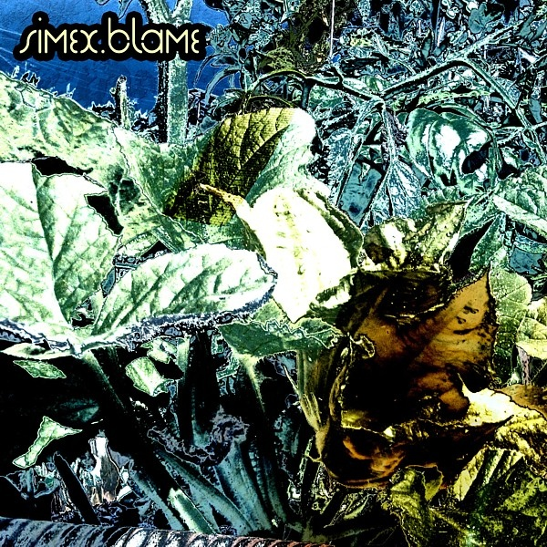 Cover of Blame