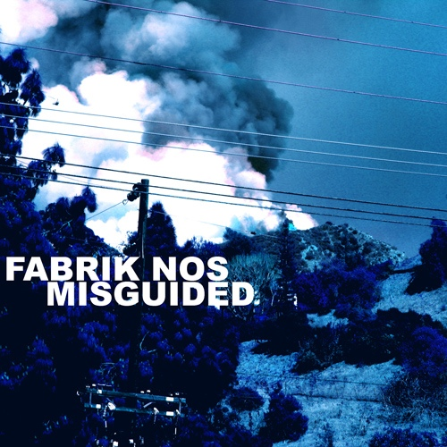 Cover of Misguided