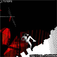 Cover of 17 Steps