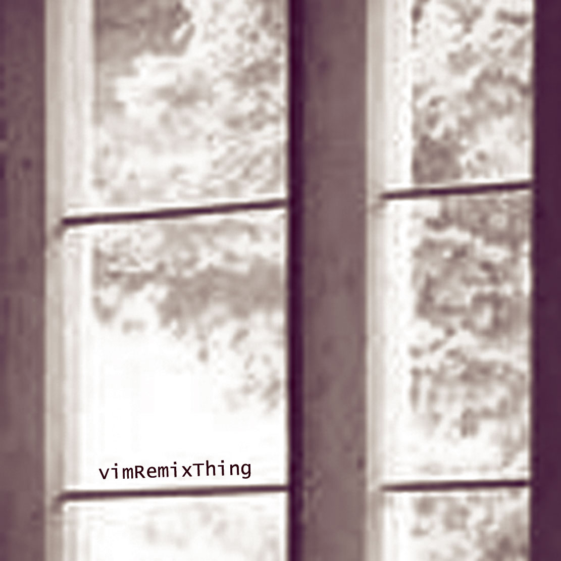 Cover of Remixconsonantthing EP