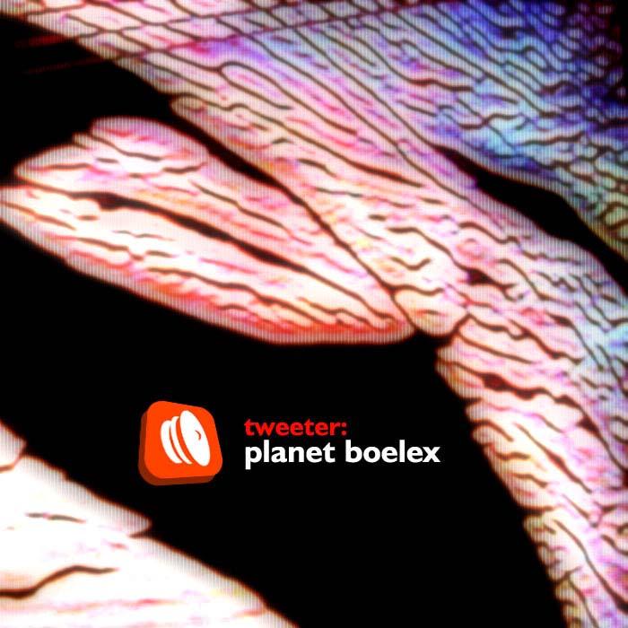 Cover of Planet Boelex