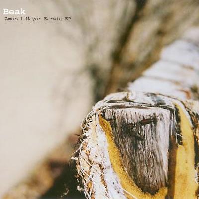 Cover of Amoral Mayor Earwig EP