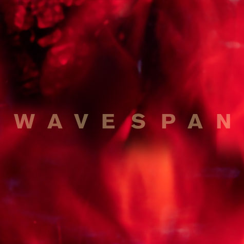 Cover of Wavespan LP