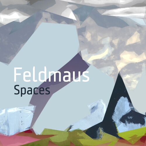 Cover of Spaces