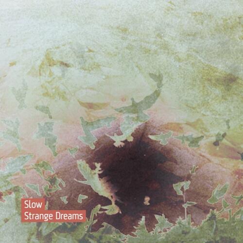 Cover of Strange Dreams