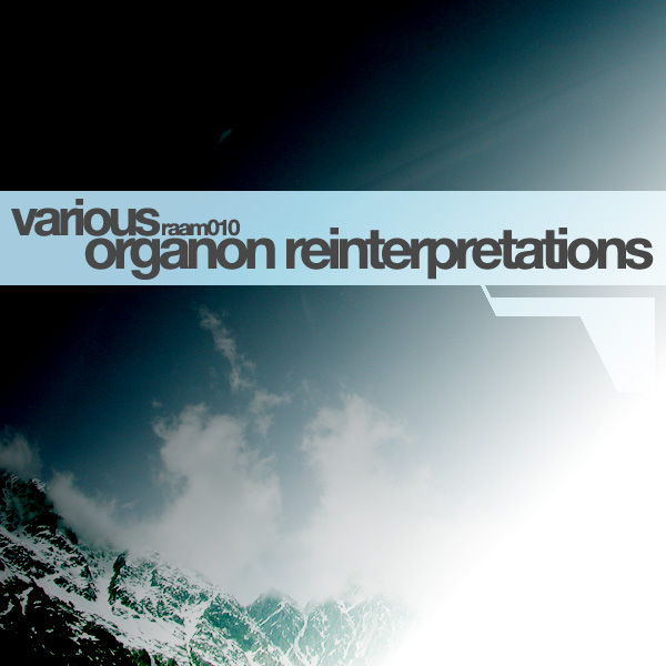 Cover of Organon Reinterpretations