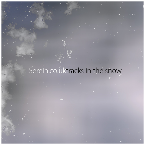 Cover of Tracks In The Snow