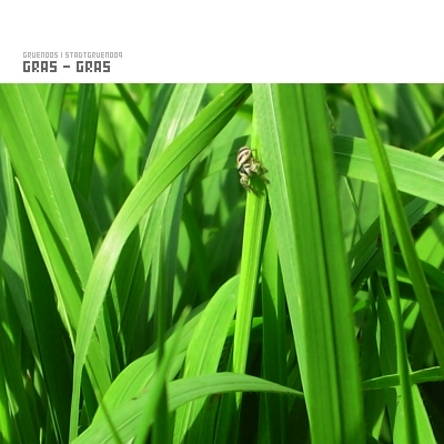 Cover of Gras